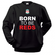Свитшот Born To Be Reds (2)