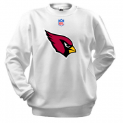 Реглан Arizona Cardinals