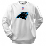 Реглан Carolina Panthers